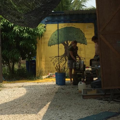 Found on Workaway - a funny, anarchistic farm in Kuala Selangor